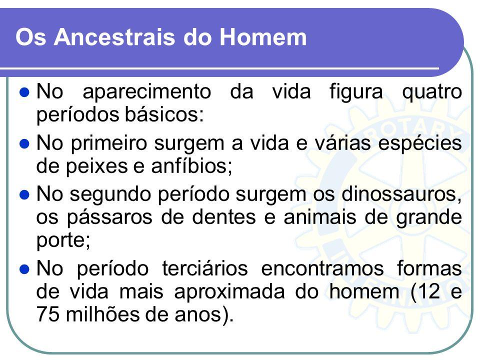 Os Ancestrais do Homem No aparecimento da vida figura quatro períodos básicos: No primeiro surgem a vida e várias espécies de peixes e anfíbios;