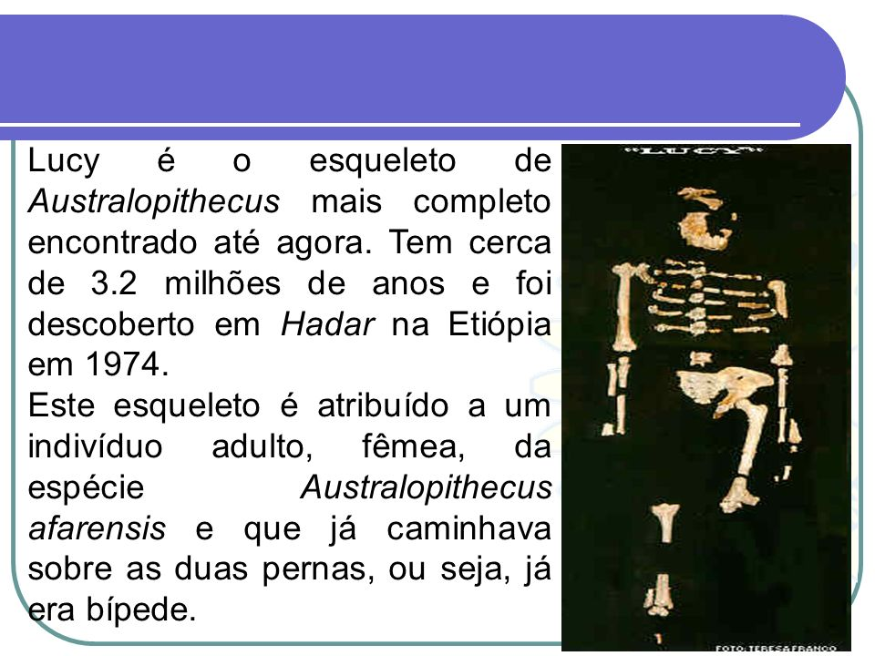 Lucy é o esqueleto de Australopithecus mais completo encontrado até agora. Tem cerca de 3.2 milhões de anos e foi descoberto em Hadar na Etiópia em 1974.