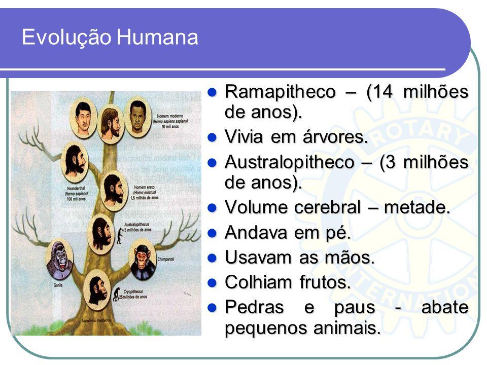 Evolução Humana Ramapitheco – (14 milhões de anos). Vivia em árvores.