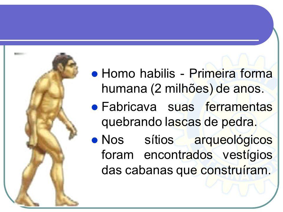 Homo habilis - Primeira forma humana (2 milhões) de anos.
