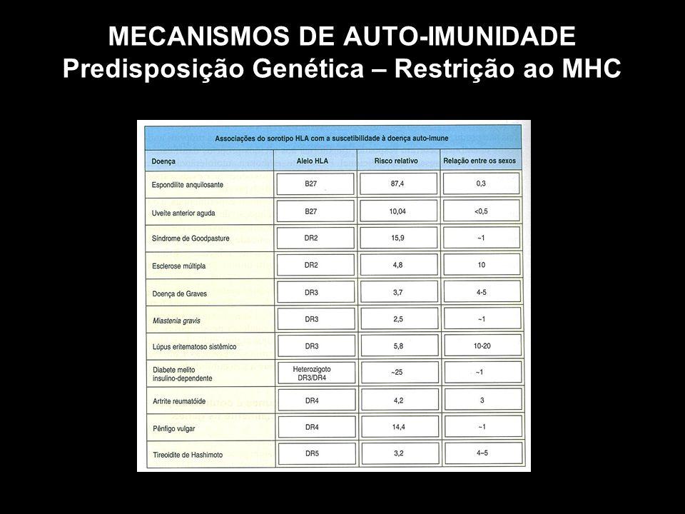 MECANISMOS DE AUTO-IMUNIDADE Predisposição Genética – Restrição ao MHC