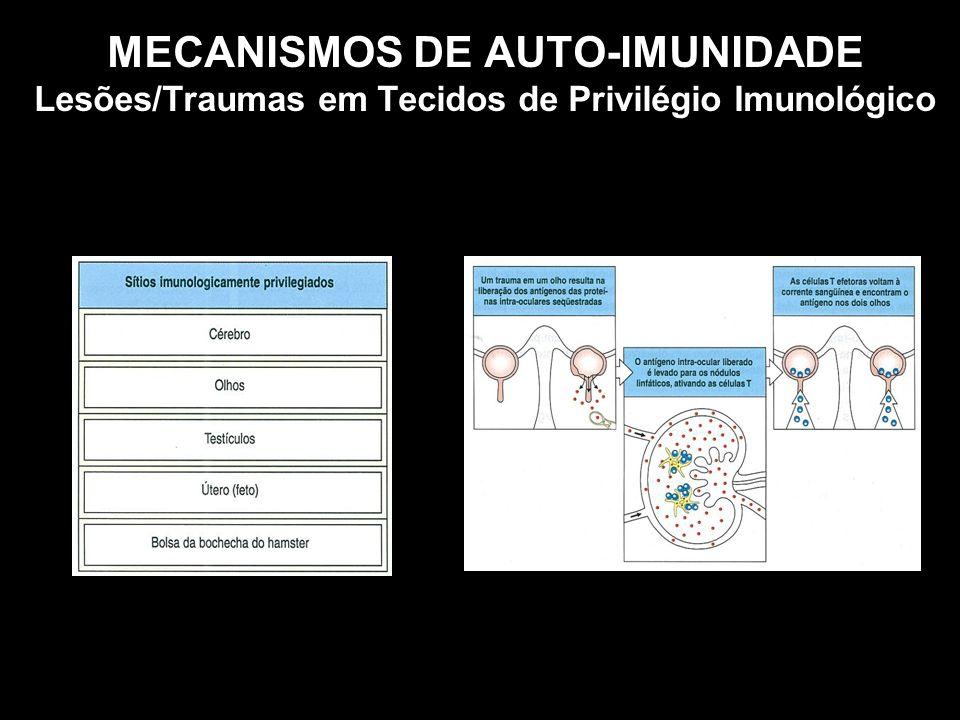 MECANISMOS DE AUTO-IMUNIDADE Lesões/Traumas em Tecidos de Privilégio Imunológico