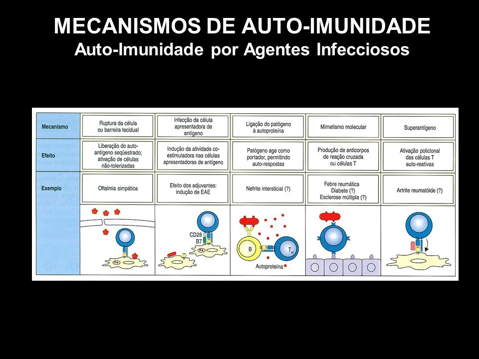 MECANISMOS DE AUTO-IMUNIDADE Auto-Imunidade por Agentes Infecciosos