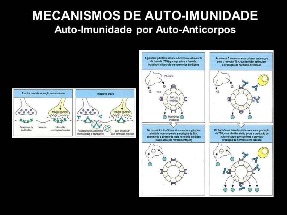 MECANISMOS DE AUTO-IMUNIDADE Auto-Imunidade por Auto-Anticorpos