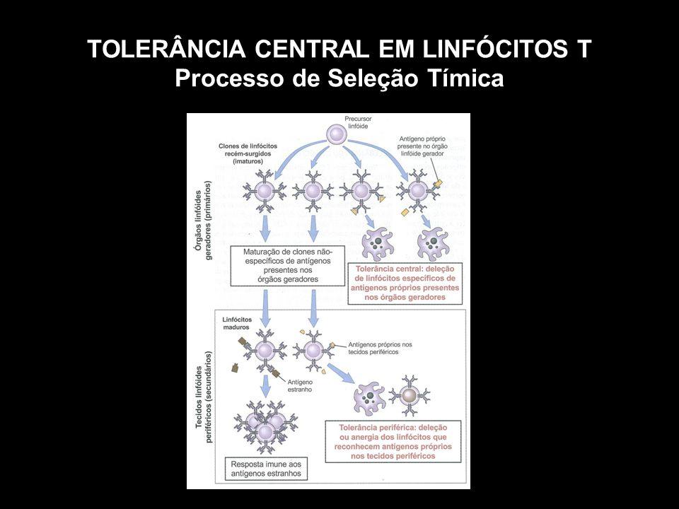 TOLERÂNCIA CENTRAL EM LINFÓCITOS T Processo de Seleção Tímica
