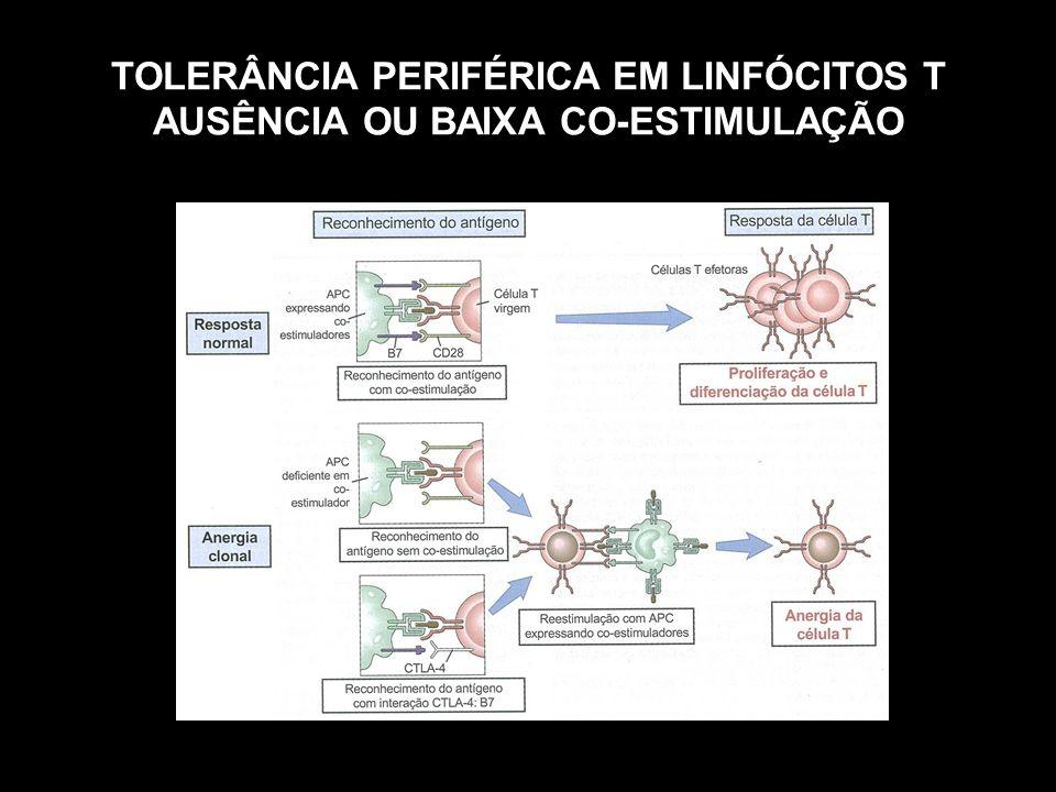 TOLERÂNCIA PERIFÉRICA EM LINFÓCITOS T AUSÊNCIA OU BAIXA CO-ESTIMULAÇÃO