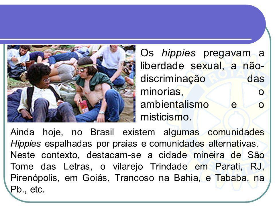 Os hippies pregavam a liberdade sexual, a não-discriminação das minorias, o ambientalismo e o misticismo.