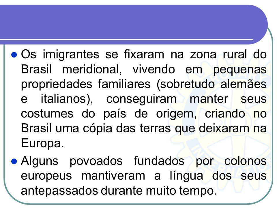 Os imigrantes se fixaram na zona rural do Brasil meridional, vivendo em pequenas propriedades familiares (sobretudo alemães e italianos), conseguiram manter seus costumes do país de origem, criando no Brasil uma cópia das terras que deixaram na Europa.