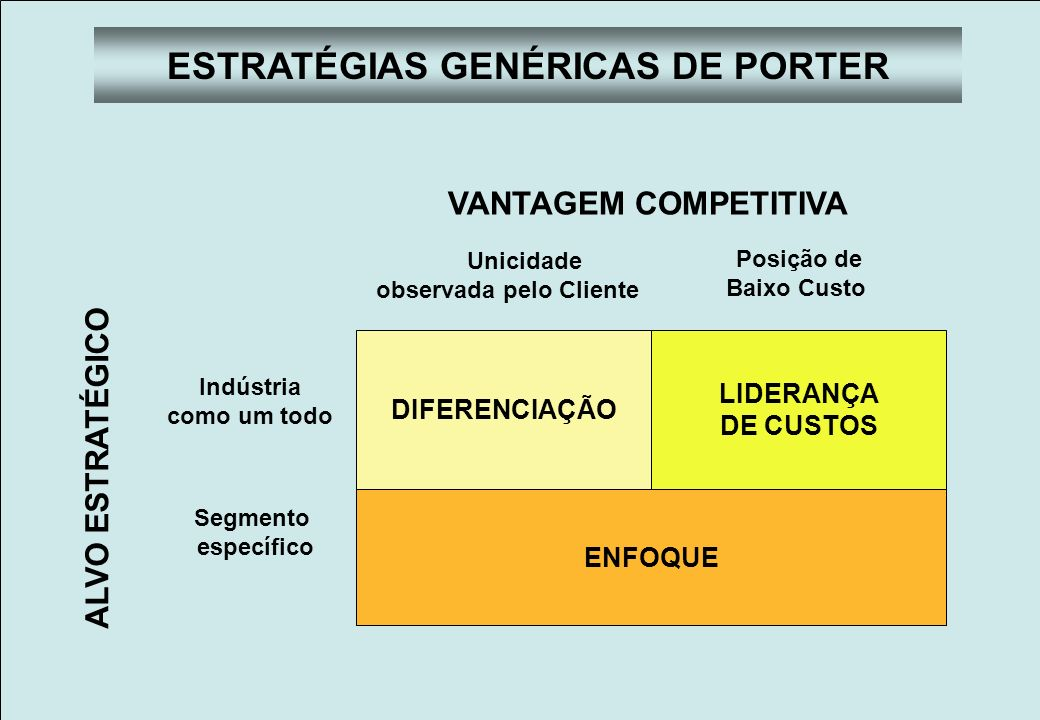 ESTRATÉGIAS GENÉRICAS DE PORTER observada pelo Cliente