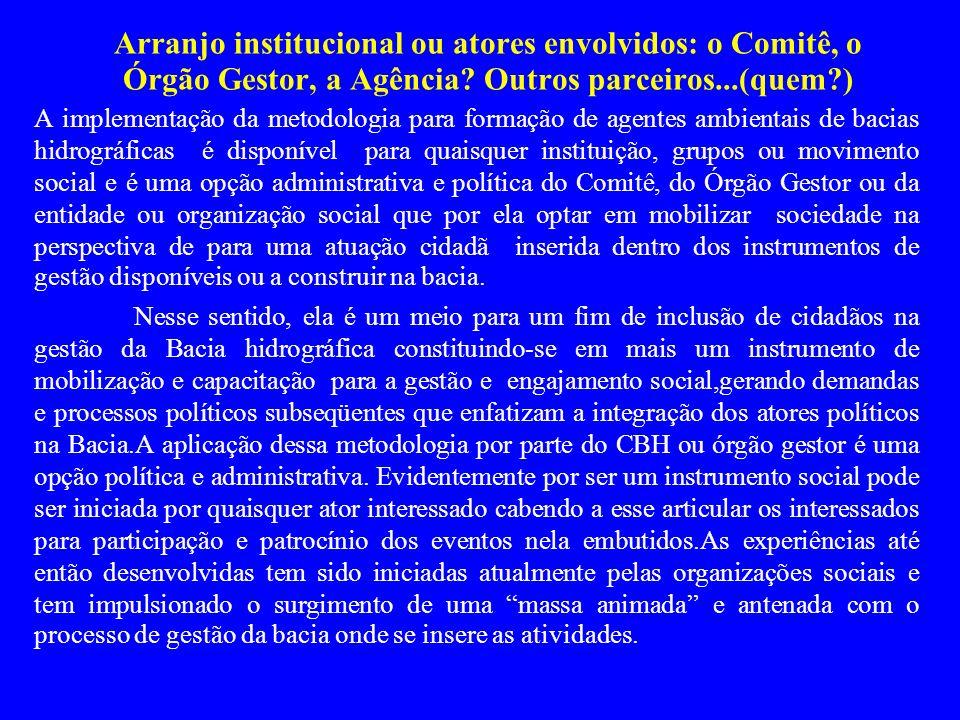 Arranjo institucional ou atores envolvidos: o Comitê, o Órgão Gestor, a Agência Outros parceiros...(quem )