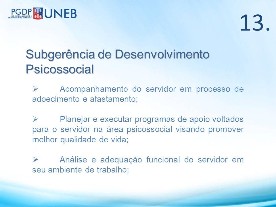 13. Subgerência de Desenvolvimento Psicossocial