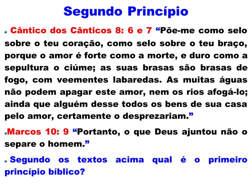Segundo Princípio