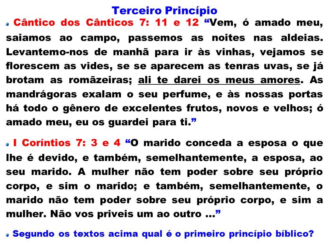 Terceiro Princípio