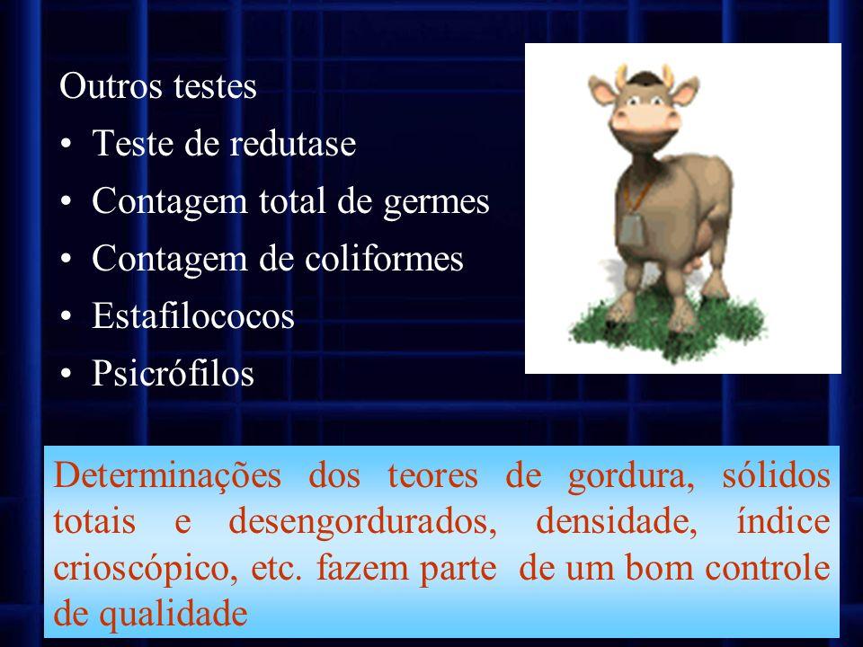 Outros testes Teste de redutase. Contagem total de germes. Contagem de coliformes. Estafilococos.