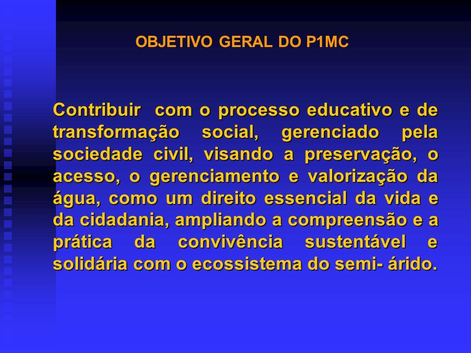 OBJETIVO GERAL DO P1MC