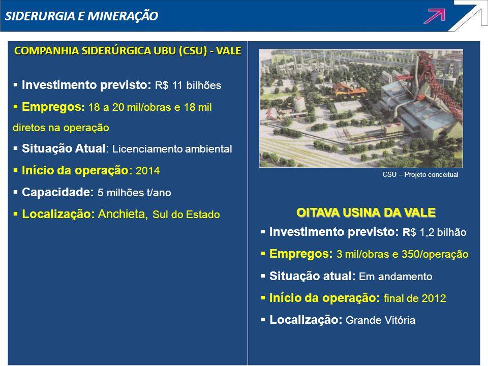COMPANHIA SIDERÚRGICA UBU (CSU) - VALE