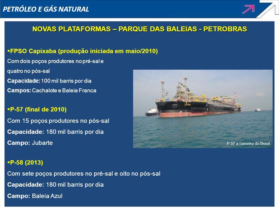 NOVAS PLATAFORMAS – PARQUE DAS BALEIAS - PETROBRAS
