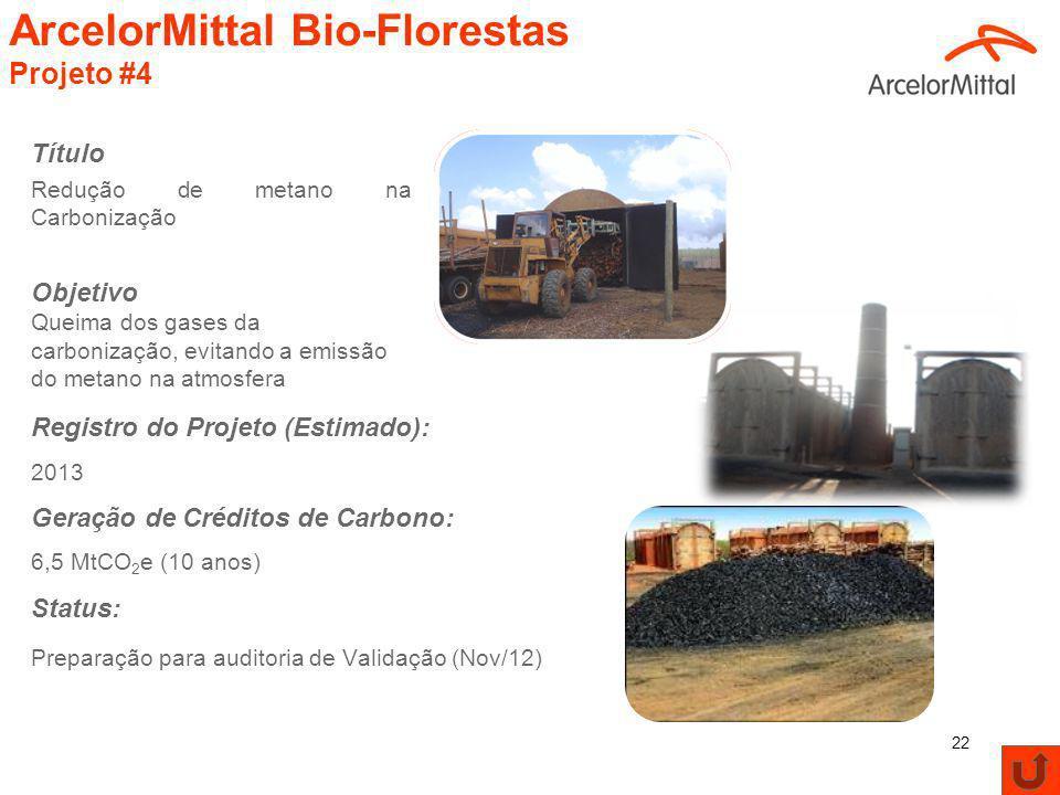 ArcelorMittal Bio-Florestas Projeto #4
