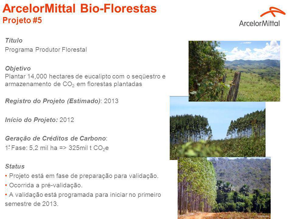 ArcelorMittal Bio-Florestas Projeto #5