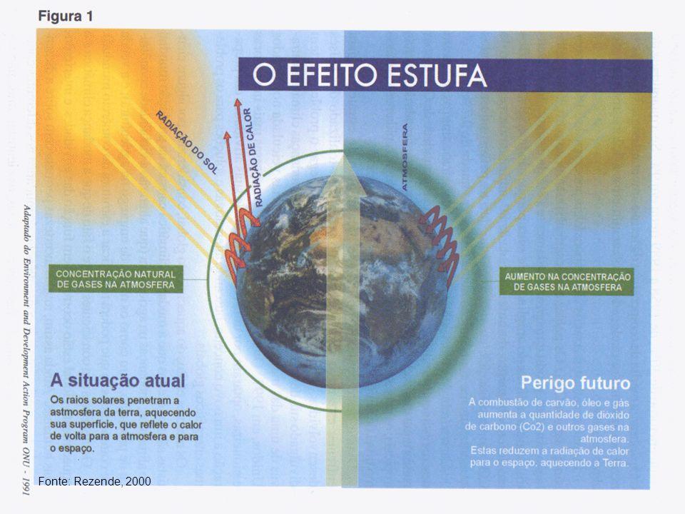 Fonte: Rezende, 2000