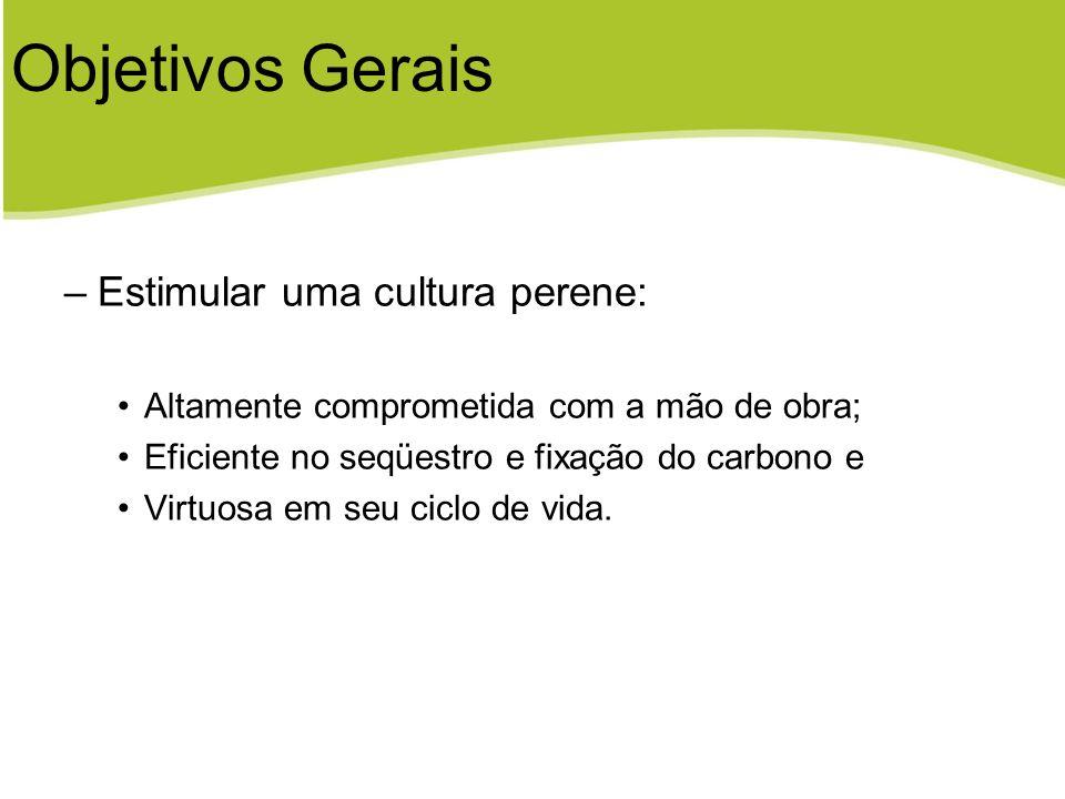 Objetivos Gerais Estimular uma cultura perene: