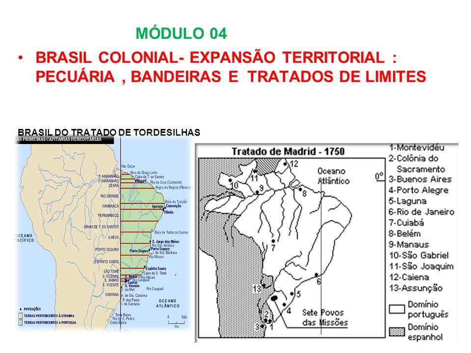 MÓDULO 04 BRASIL COLONIAL- EXPANSÃO TERRITORIAL : PECUÁRIA , BANDEIRAS E TRATADOS DE LIMITES.