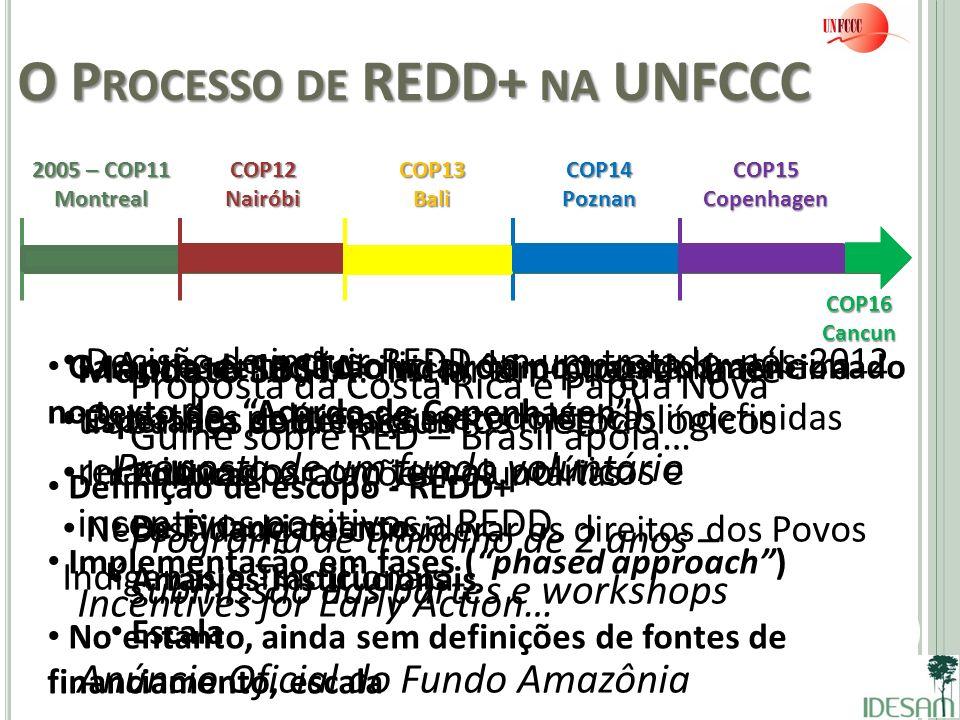 O Processo de REDD+ na UNFCCC