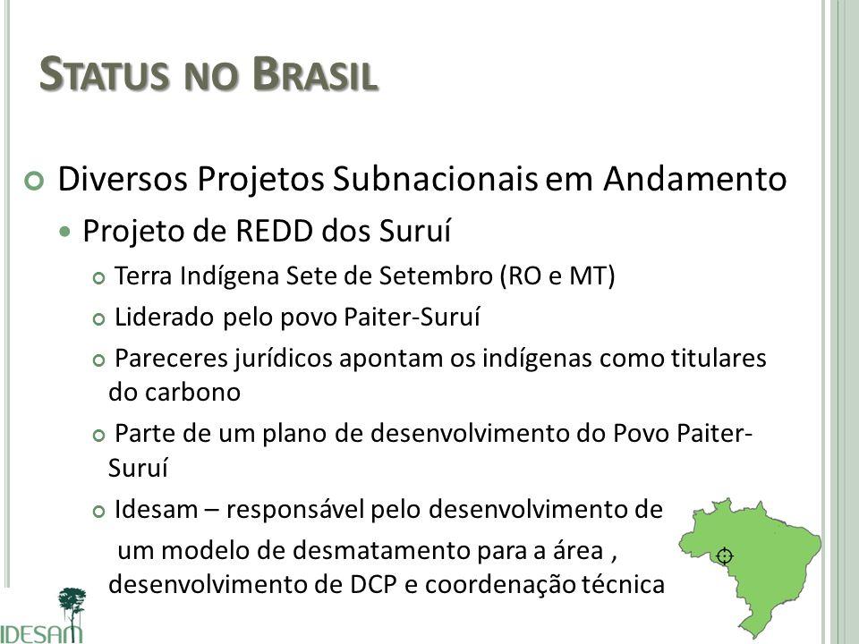 Status no Brasil Diversos Projetos Subnacionais em Andamento