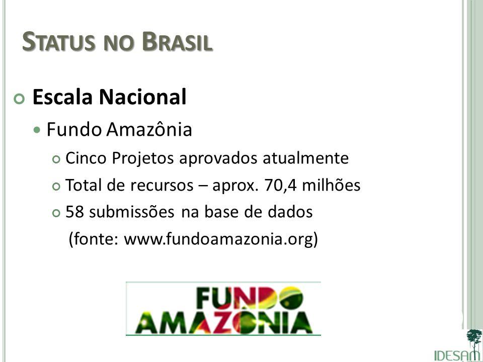 Status no Brasil Escala Nacional Fundo Amazônia