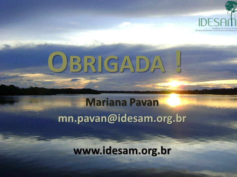 Mariana Pavan mn.pavan@idesam.org.br www.idesam.org.br