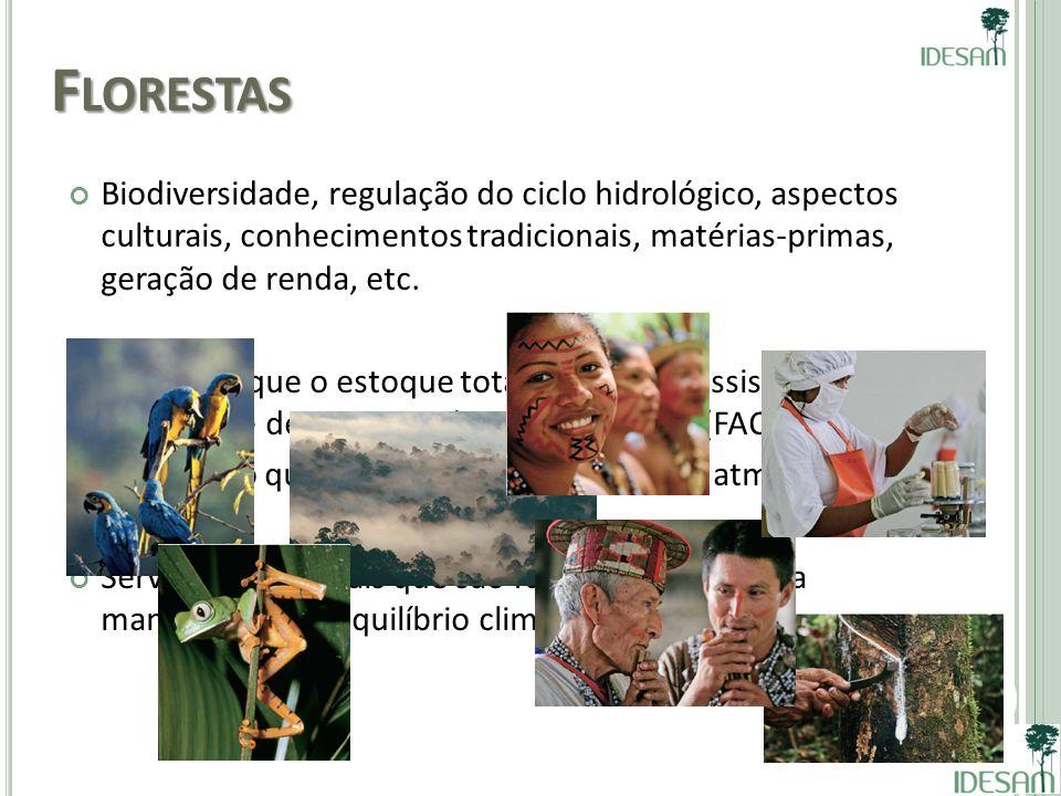 Florestas Biodiversidade, regulação do ciclo hidrológico, aspectos culturais, conhecimentos tradicionais, matérias-primas, geração de renda, etc.