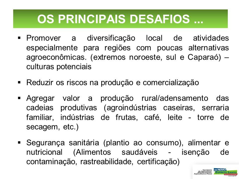 OS PRINCIPAIS DESAFIOS ...