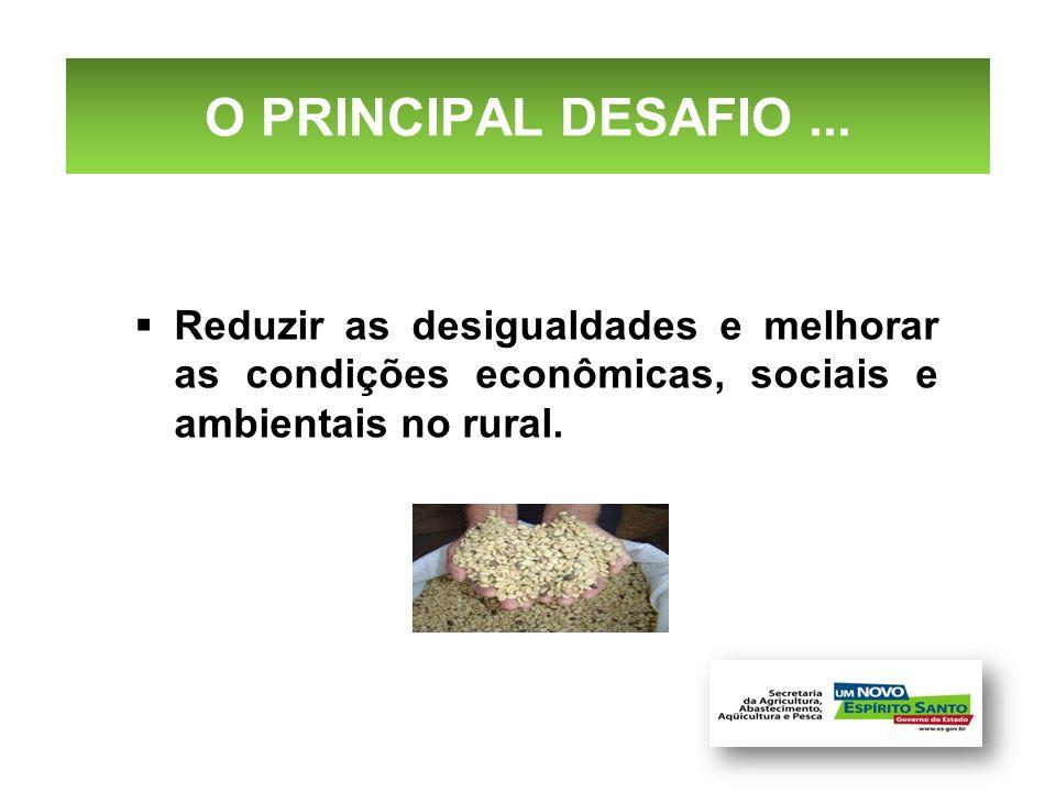 O PRINCIPAL DESAFIO ... Reduzir as desigualdades e melhorar as condições econômicas, sociais e ambientais no rural.