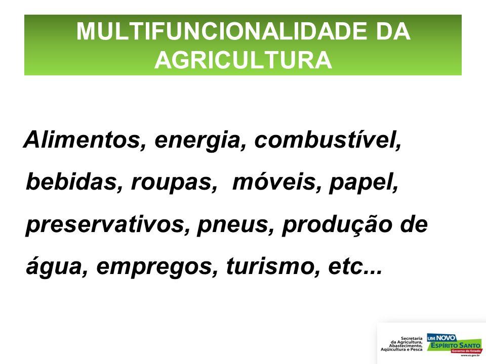 MULTIFUNCIONALIDADE DA AGRICULTURA