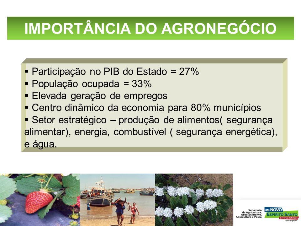 IMPORTÂNCIA DO AGRONEGÓCIO
