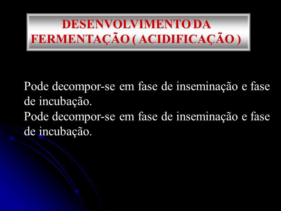 DESENVOLVIMENTO DA FERMENTAÇÃO ( ACIDIFICAÇÃO )