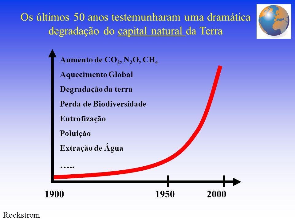 Os últimos 50 anos testemunharam uma dramática degradação do capital natural da Terra