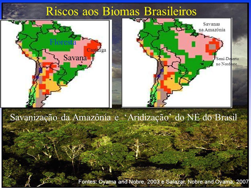 Riscos aos Biomas Brasileiros