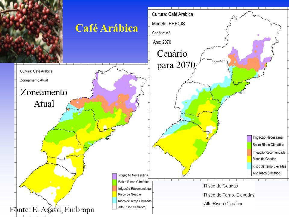 Café Arábica Cenário para 2070 Zoneamento Atual