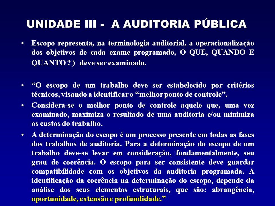 UNIDADE III - A AUDITORIA PÚBLICA