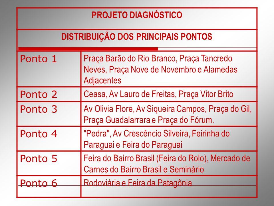 DISTRIBUIÇÃO DOS PRINCIPAIS PONTOS