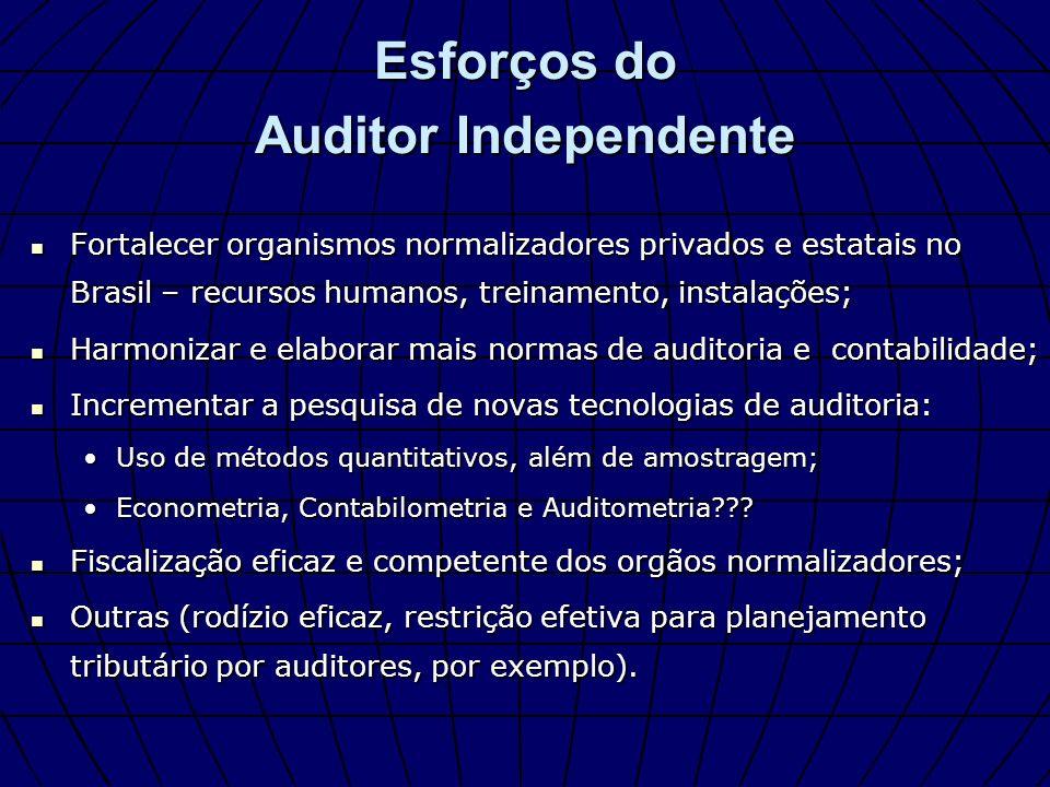 Esforços do Auditor Independente