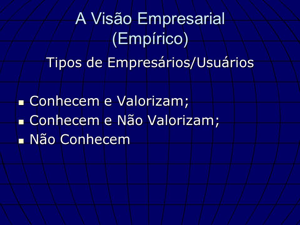 A Visão Empresarial (Empírico)