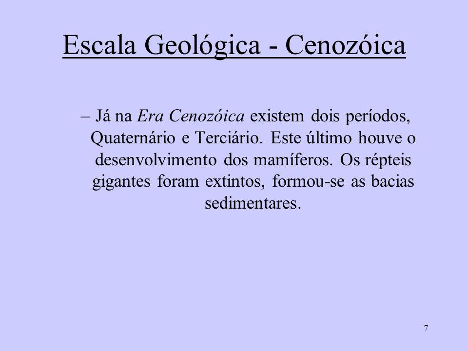 Escala Geológica - Cenozóica