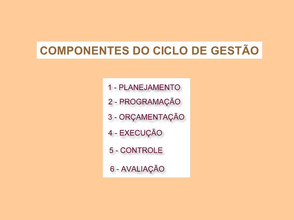 COMPONENTES DO CICLO DE GESTÃO