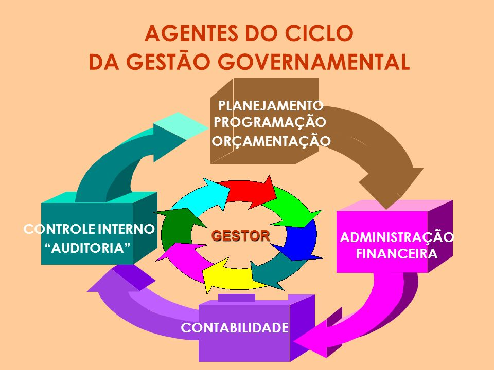 DA GESTÃO GOVERNAMENTAL