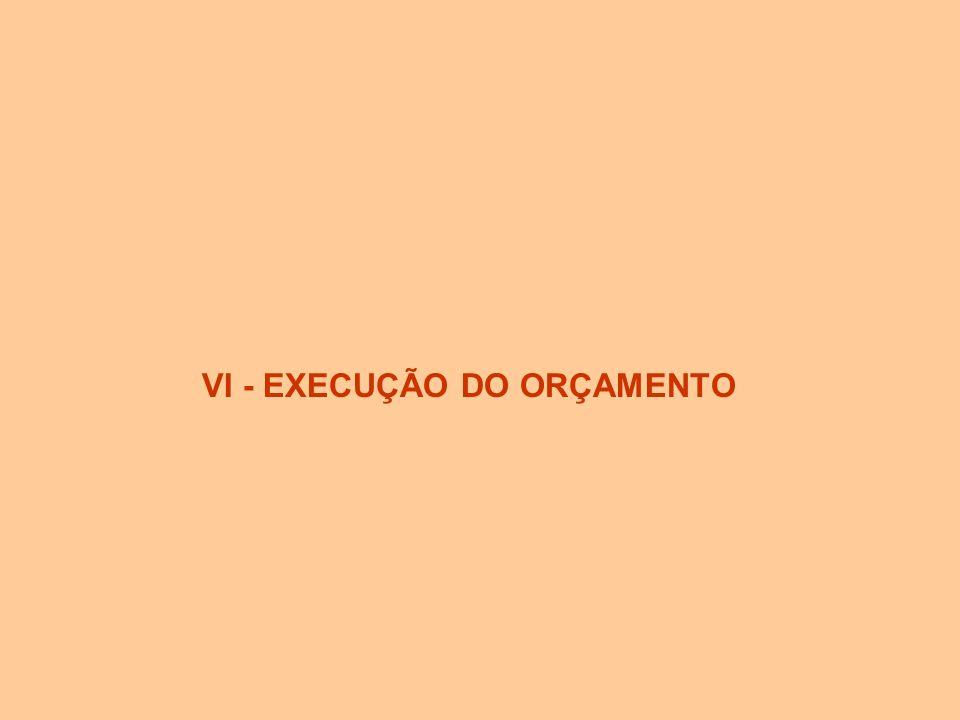 VI - EXECUÇÃO DO ORÇAMENTO
