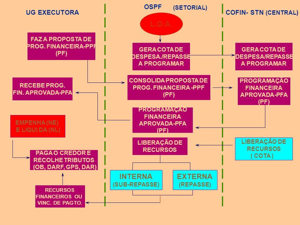 L.O.A. INTERNA EXTERNA OSPF UG EXECUTORA COFIN- STN (CENTRAL)