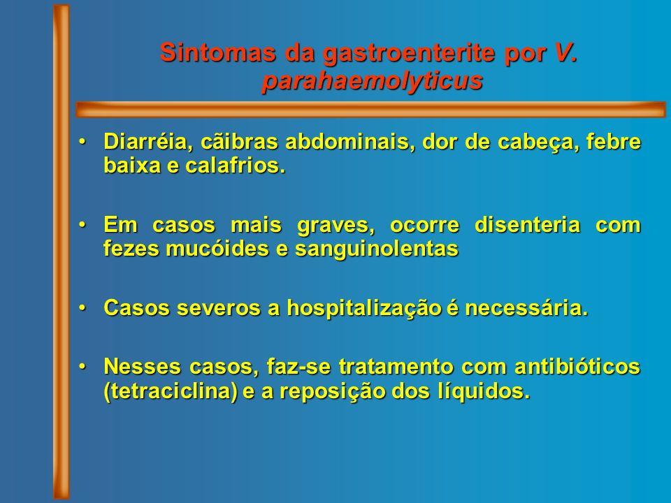 Sintomas da gastroenterite por V. parahaemolyticus
