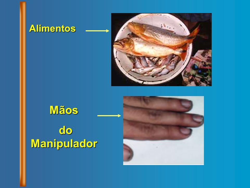 Alimentos Mãos do Manipulador